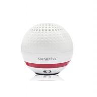 Soundmax R-100
